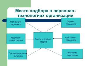 Подбор и адаптация персонала: простые правила для рекрутера