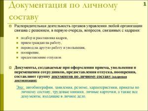 Распорядительная  документация по личному составу