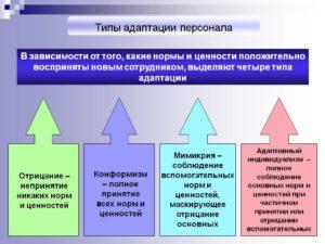 Адаптация персонала в организации