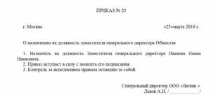 Приказ о назначении заместителя директора ООО: образец