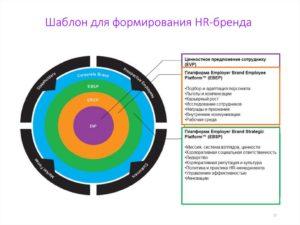 Роль ценностного предложения работодателя при построении HR-бренда