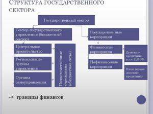 Состав организаций государственного и негосударственного сектора