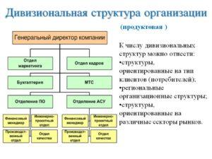 Дивизиональная структура – интенсивный путь развития компании