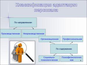 Классификация видов адаптации персонала