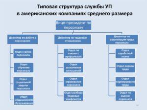 Эффективная структура кадровой службы