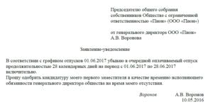Образец заявления на отпуск генерального директора
