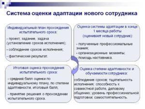 Оценка эффективности испытательного срока