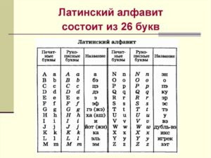 Можно ли использовать иностранные слова и буквы латинского алфавита в наименованиях должностей?
