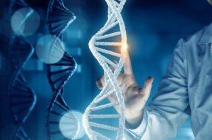 ДНК успешной работы компании