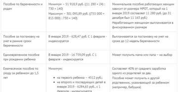 Декретные выплаты для ИП в 2019 году и другие пособия