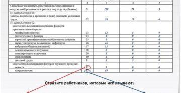 Форма 1-Т (условия труда): образец 2019