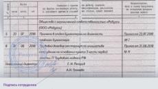 Правила заполнения трудовой книжки и образец 2021